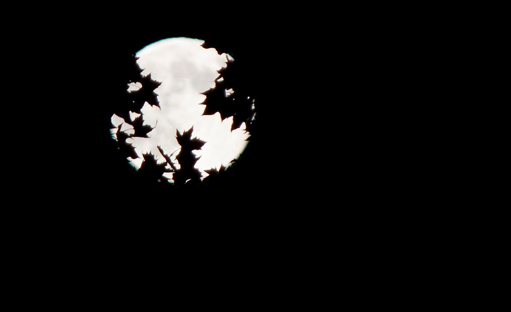 superluna-1